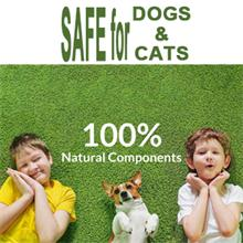 Safe For Dogs & Cats