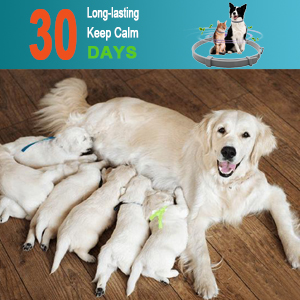 30 DAYS Keep Soothing & Relaxing