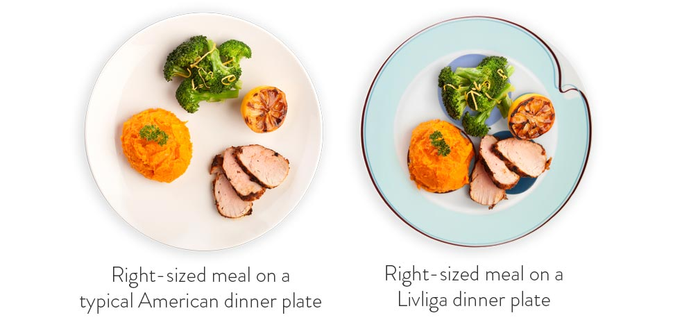 The simply elegant intelligent designs integral to each piece of our dishware were specifically created to subtly guide you in eating a balanced meal with ...  sc 1 st  Amazon.com & Amazon.com | Portion Control Plates 4 Piece Hälsa Dinner Plate For ...