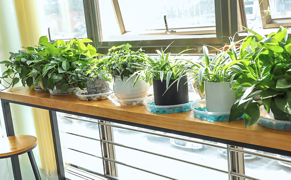 plant trays for indoors