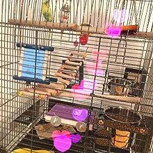 Large Parrot Bird Cage parakeet bird cage