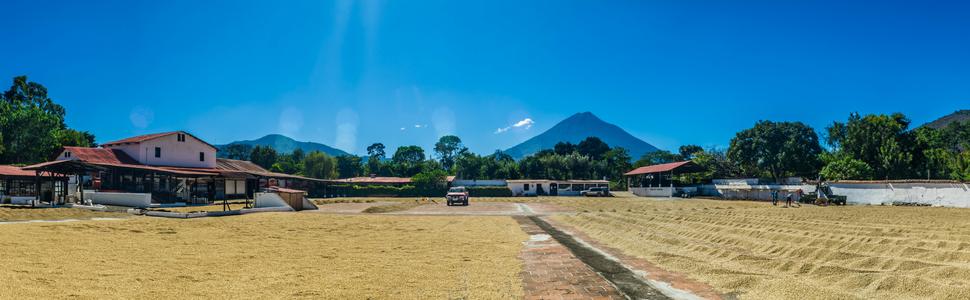 La Azotea Gourmet Coffee Antigua Guatemala Roasted Beans Whole Medium Dark Roast Espresso Ground