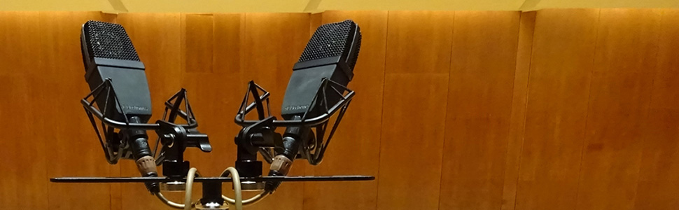 Two sE4400a mics