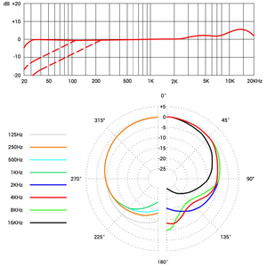 sE2200 pattern and frequency response