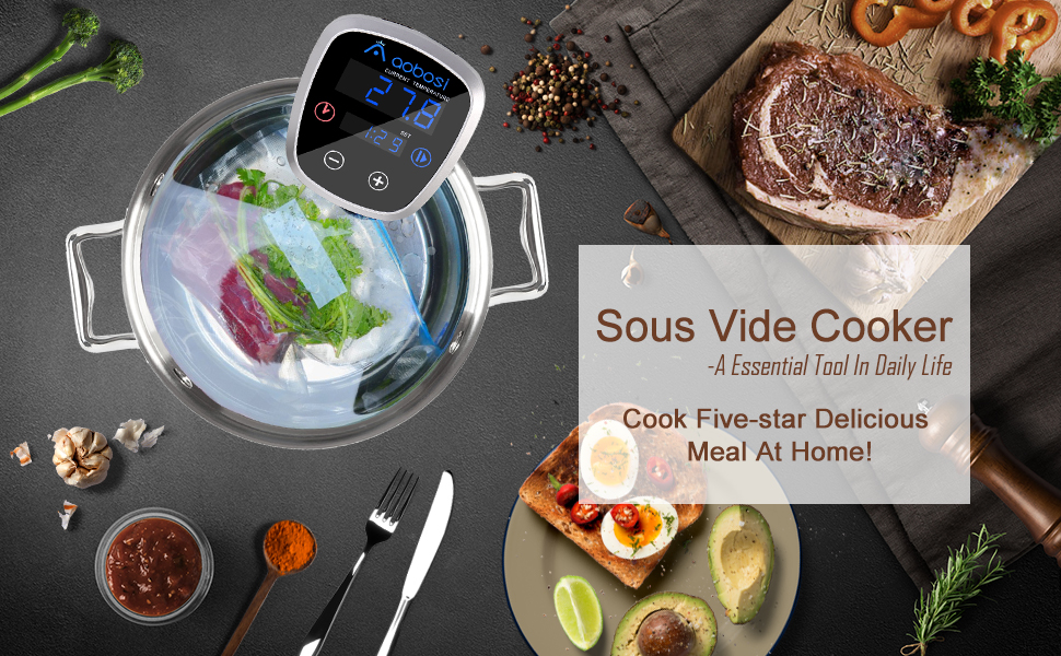 Aobosi Sous Vide Precision Cooker 800W Thermal Immersion Circulator