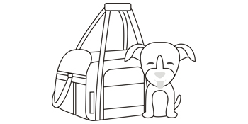 Soft sided dog carrier bag