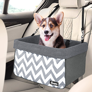 Dog car seat with safety belt