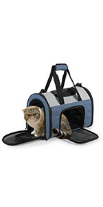 small cat carrier