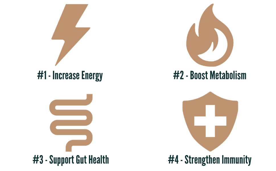 natural force organic mct oil helps increase energy boost metabolism support gut health and immune