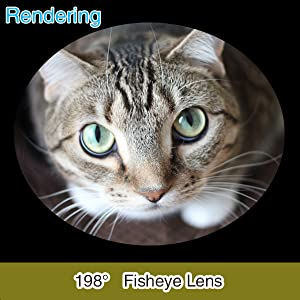 【198° Fisheye Lens】