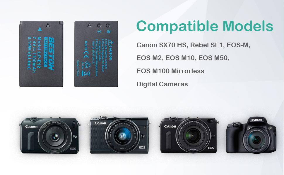 Amazon.com: BESTON 2 Pack LP-E12 Batteries and USB Battery ...