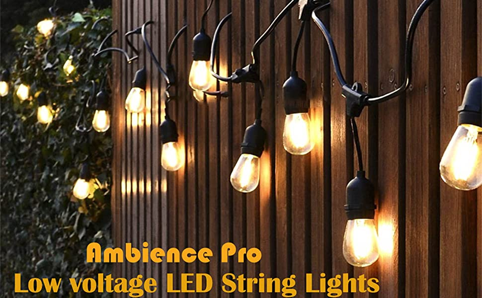 Low V... Ashialight 12 Volt Outdoor String Lights with Transformer and US Plug