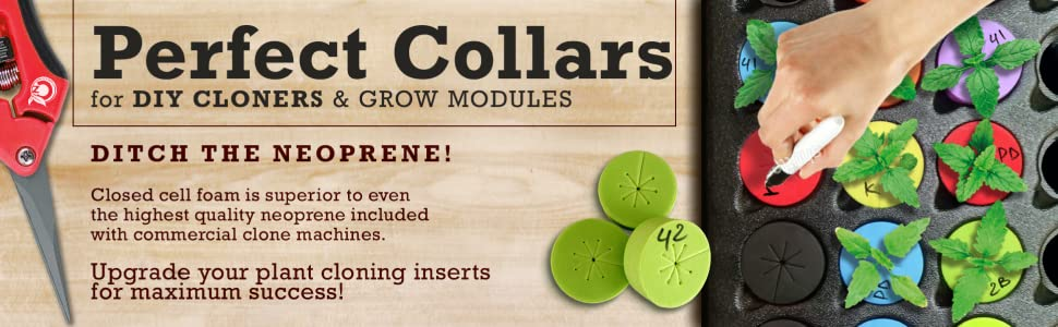 3 inch cloning collars in EZ Cloner Turbo Kloner commecial cloner Botanicare
