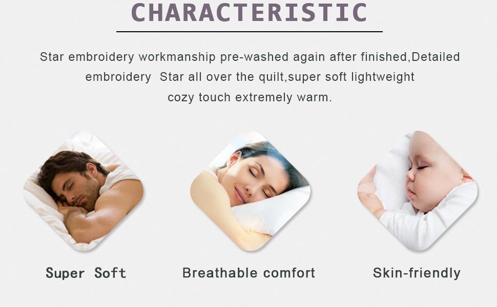 3 pc bedspread set