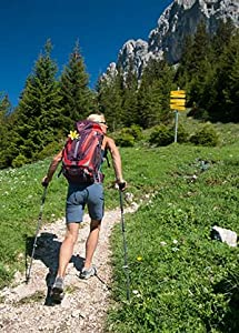 Amazon Com Deuter Act Trail Pro 38 Sl Ultralight Hiking