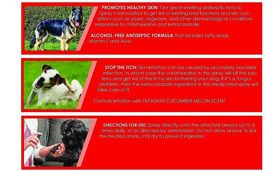 healthy skin stop itch antiseptic formula skin irritation bacteria yeast ketoconazole keto spray pet