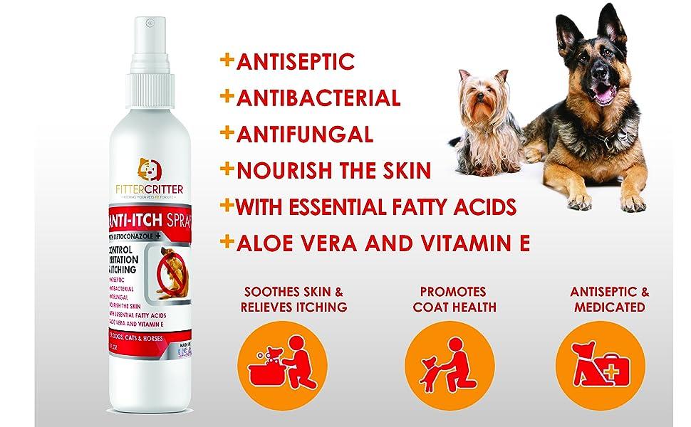 antiseptic antibacterial antifungal nourishing skin fatty acid aloe vera vitamin e soothes itching
