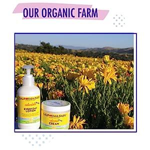 Our Organic Farm