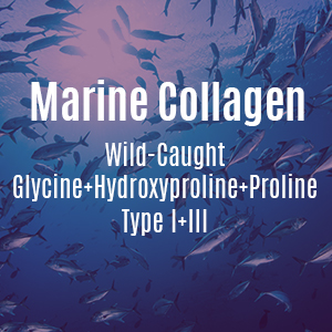 Marine Collagen Wild Caught Type I+III