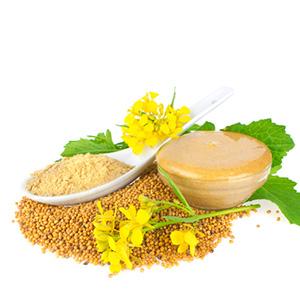Yellow mustard seeds powder