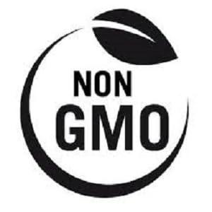 non gmo soy free gluten free vegan