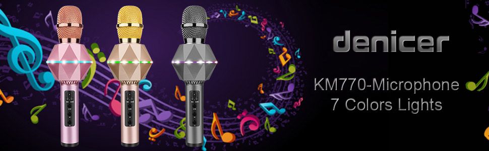 Karaoke microphone with case