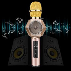 Karaoke microphone speaker