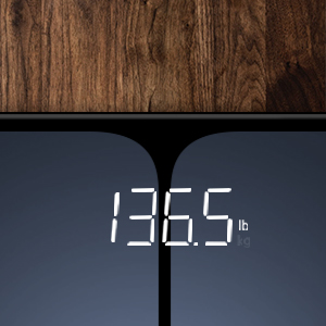 accurate scale biometric scale scale weight scale electric bodyweight scale