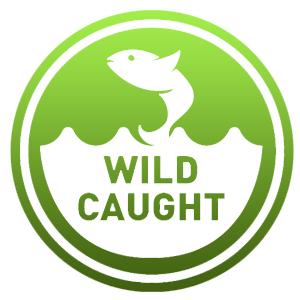 wild caught alaskan salmon oil