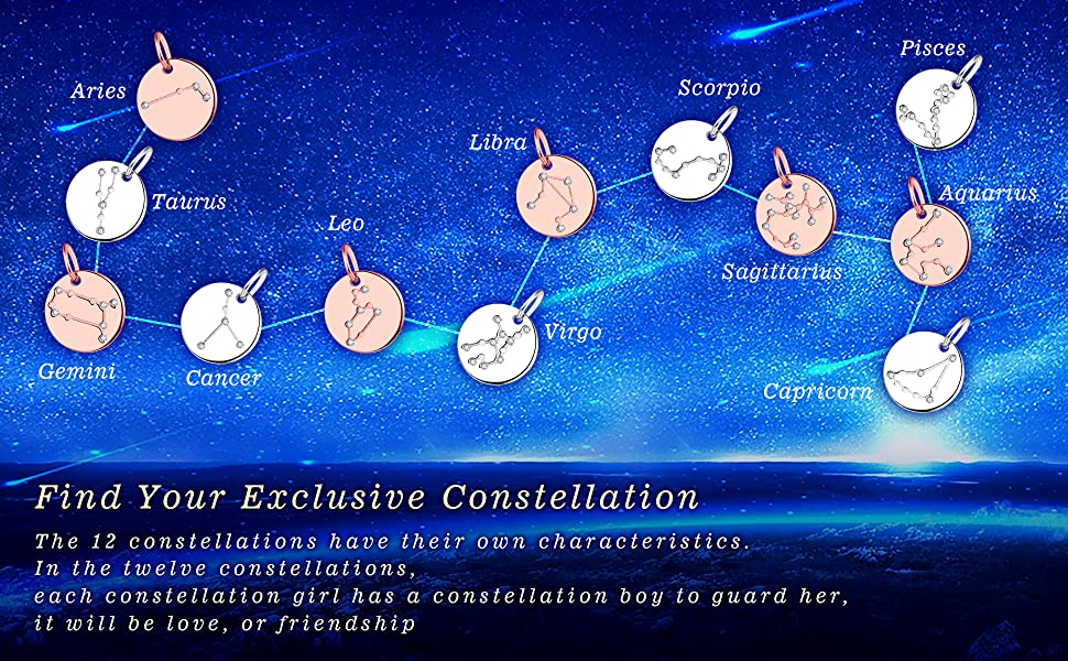 YL Women's Constellation Jewelry Sterling Silver Zodiac Necklace Astrology  Coin Disc Horoscope Pendant with 14K White/Rose Gold Plated