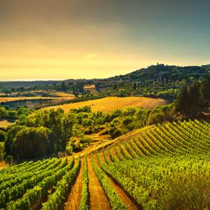 Tuscany Italy Balsamic Vinegar Modena Italy