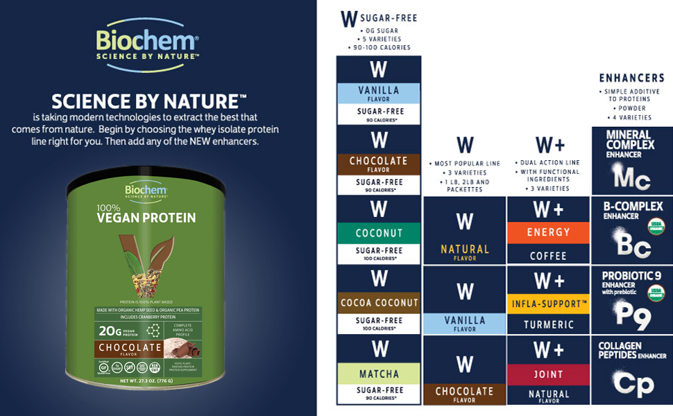 vegan chocolate protein