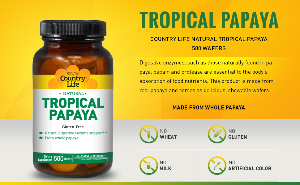 Amazon.com: Papaya tropicales naturales 500 Obleas: Health ...