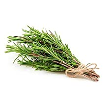 Rosemary Extract