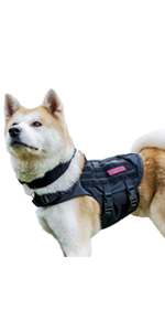 tactical dog harness small medium large