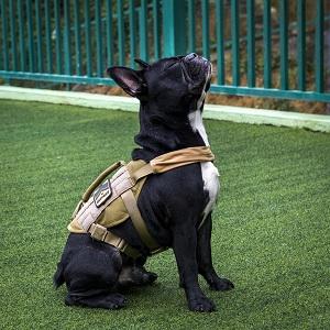 small dog harness vest