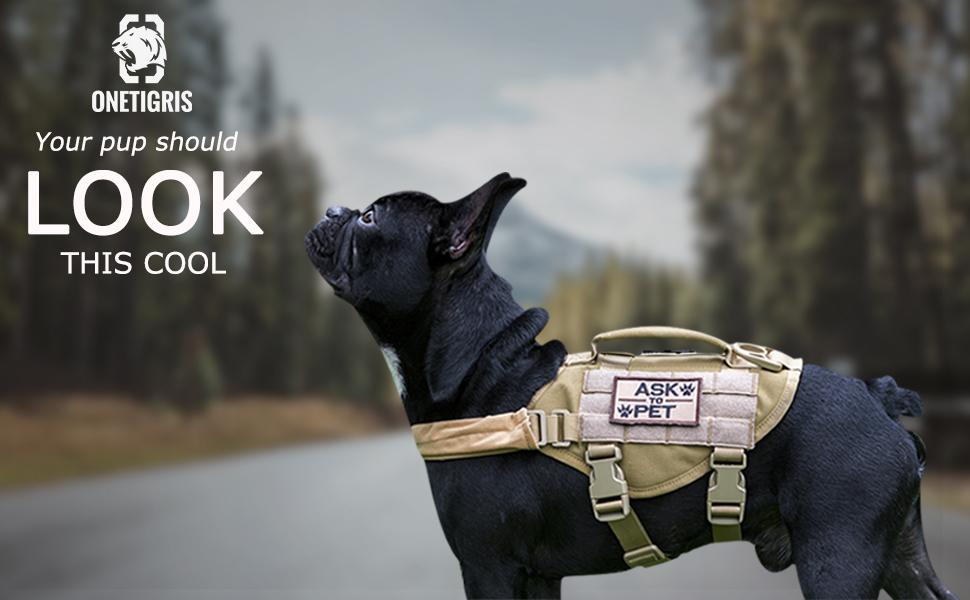 little pup vest harness