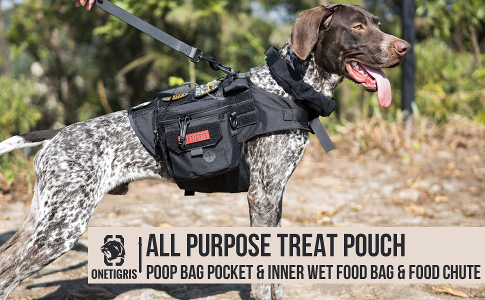 treat pouch bag