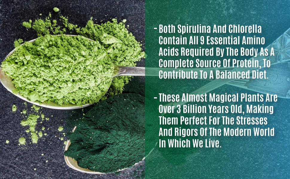 Spirulina Chlorella Powders