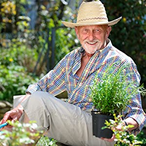 Middle Age Man Garden
