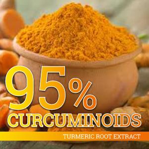 Turmeric Curcumin supplement, 95% standardized curcuminoids pills capsules vegetarian powerful joint