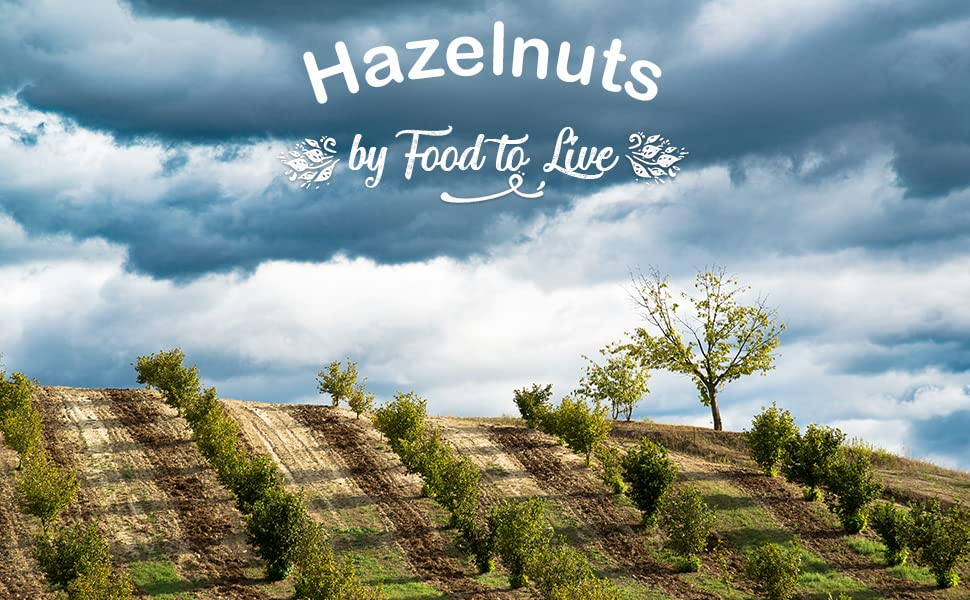 hazelnuts, food to live