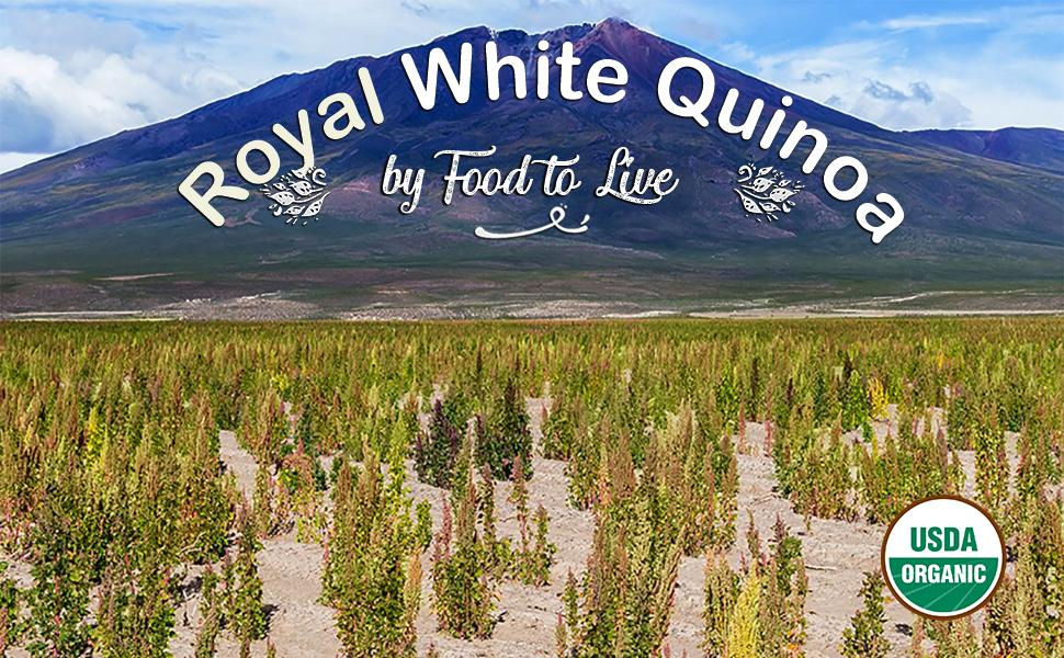 food to live, white quinoa