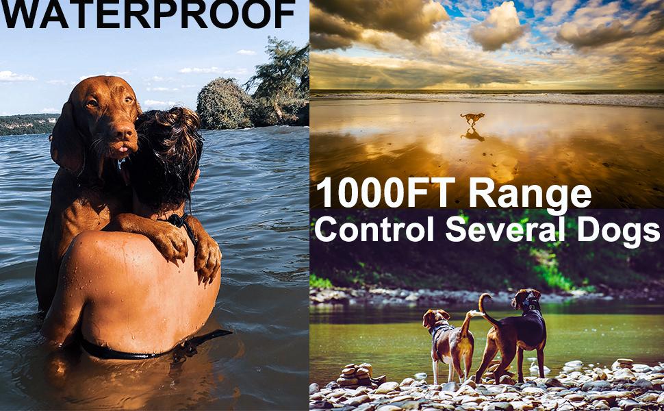 Waterproof Training Collar Rechargeable Training Collar 1000Ft range Training Collar