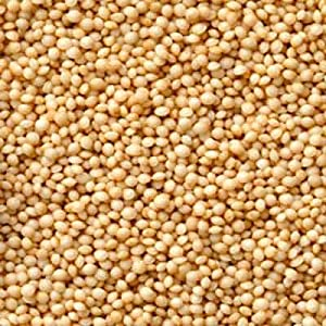 Excitement About How To Pop Amaranth Seeds