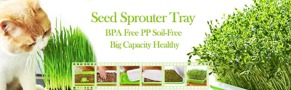 Seed Sprouter Tray BPA Free