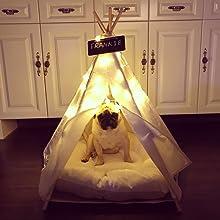 Amazon Com Little Dove Pet Teepee Dog Puppy Amp Cat Bed