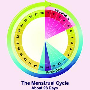 Wondfo Pregnancy Test Strips (20 Count)