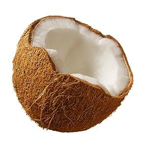 Organic Raw Virgin Cold-Pressed Coconut Oil