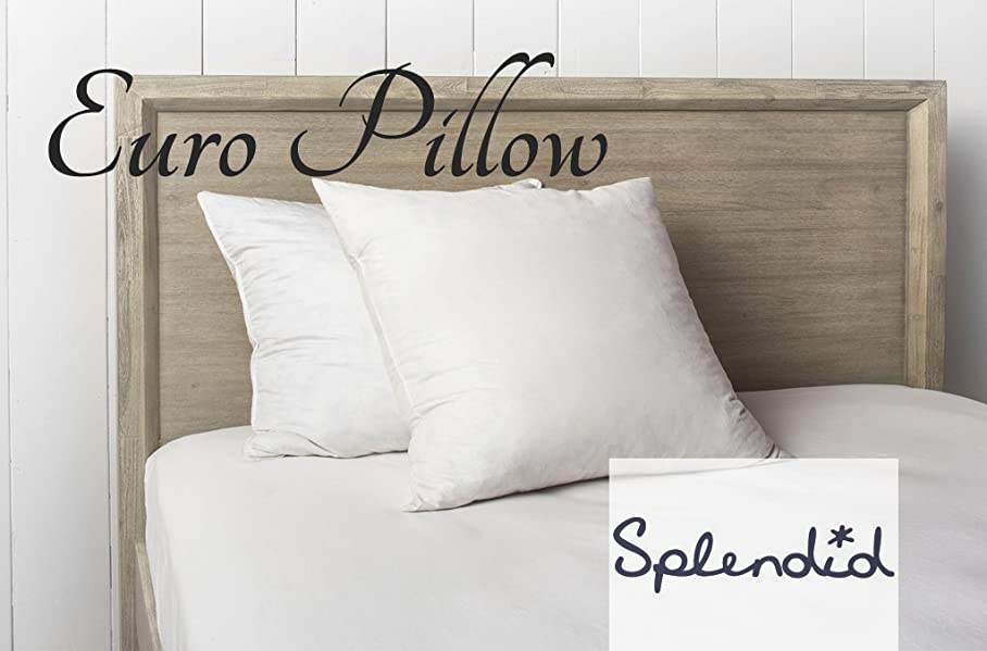 Splendid Collection Down Alternative Euro Pillows (26Inch X 26Inch) Gives  You Desirable Comfort And Luxurious Joy With Their Exquisite Details And  Quality ...